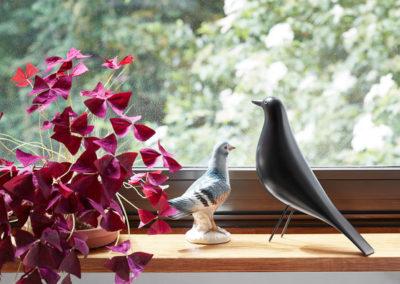 eames_house_bird_vitra_sedya_2